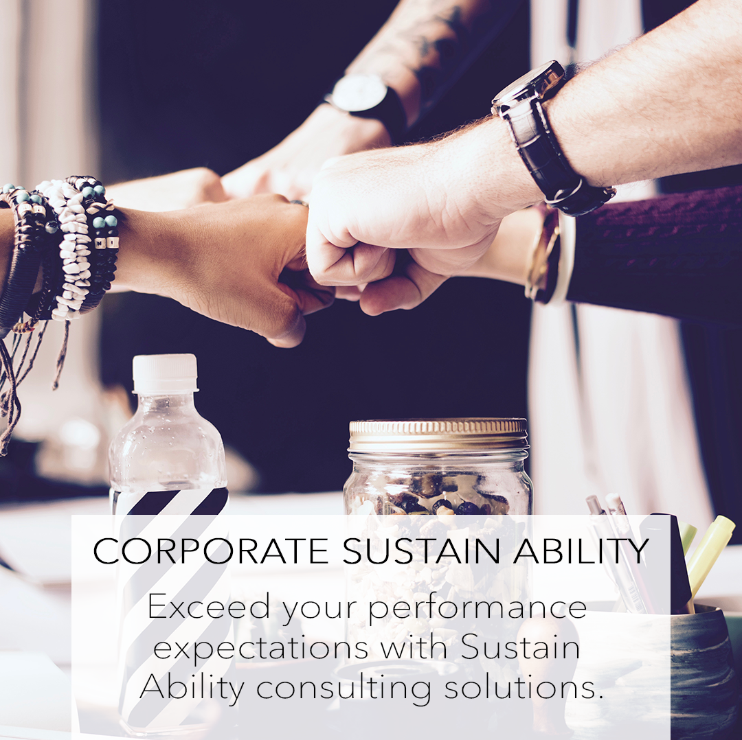 CORPORATE SUSTAIN ABILITY. EXCEED YOUR PERFORMANCE EXPECTATIONS WITH SUSTAIN ABILITY CONSULTING SOLUTIONS