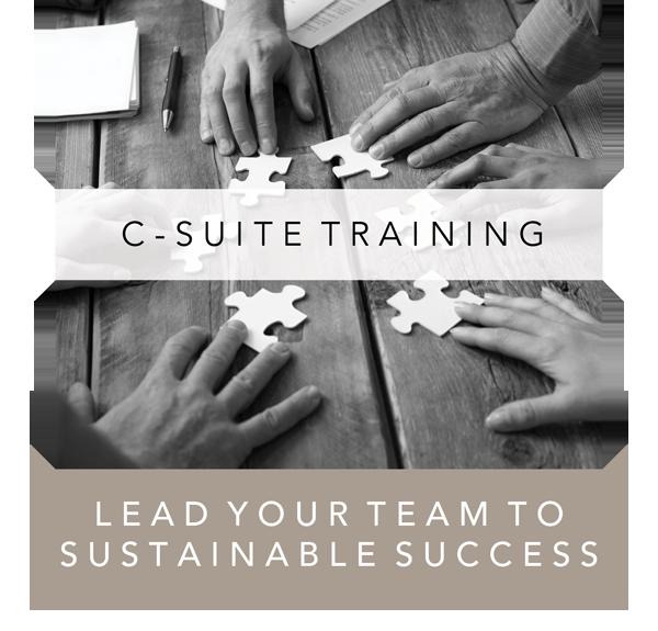 C-Suite Training